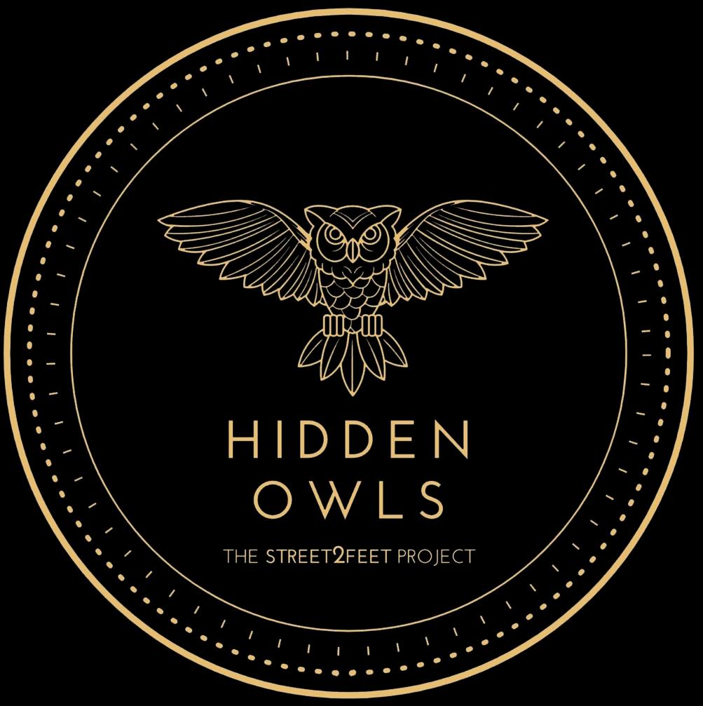 Celebrating Hidden Owls Launch